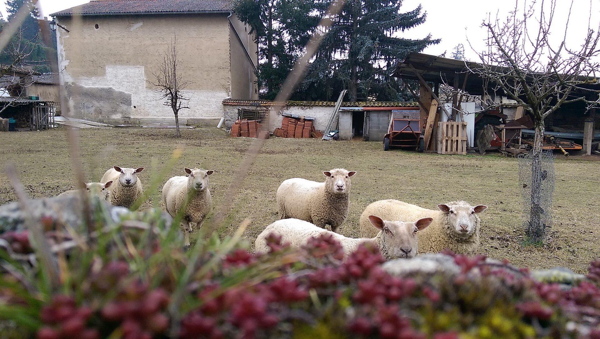 Très froid dehors mais très chaud dedans - Crédit photo izart.fr