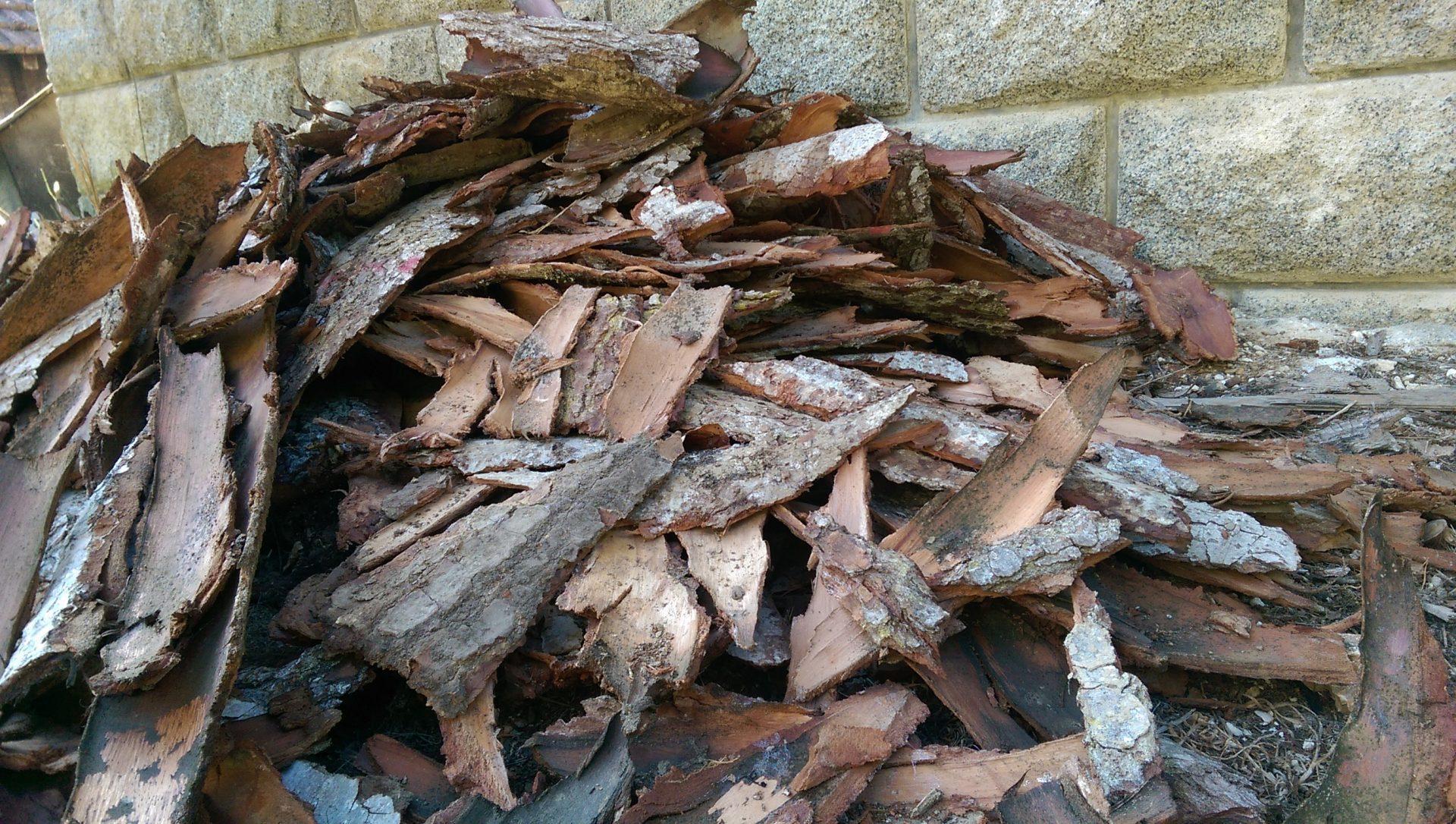J'adore l'odeur du feu de bois - Crédit photo izart.fr