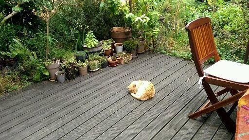 J'ai mal à mon jardin - Crédit photo izart.fr